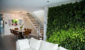 green wall 2 300x177 طراحی دیوار نورگیر و پاسیو با ایده های نو