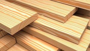 sell russian wood فروش مواد اولیه چوب