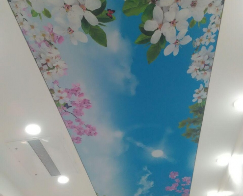 Virtual ceiling5 495x400 سقف مجازی