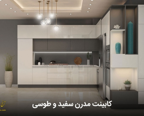 modern white and gray cabinets 01 495x400 صفحه اصلی